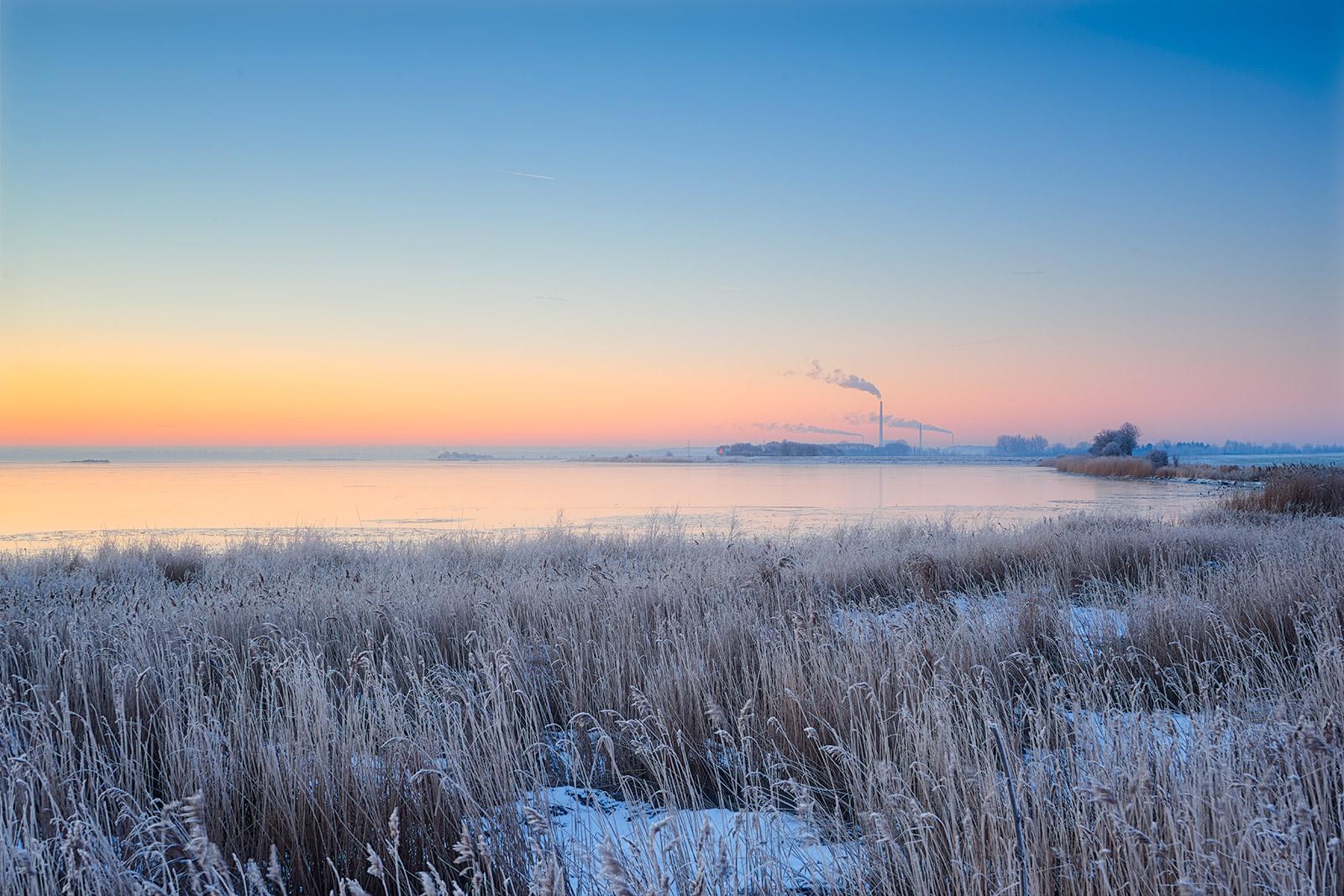 Vintermorgen ved Odense Fjord